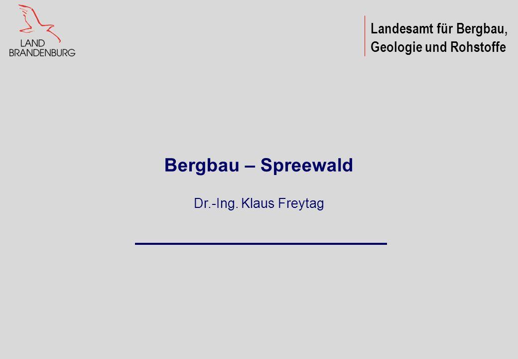 Landesamt für Bergbau, Geologie und Rohstoffe Bergbau – Spreewald Dr.-Ing. Klaus Freytag