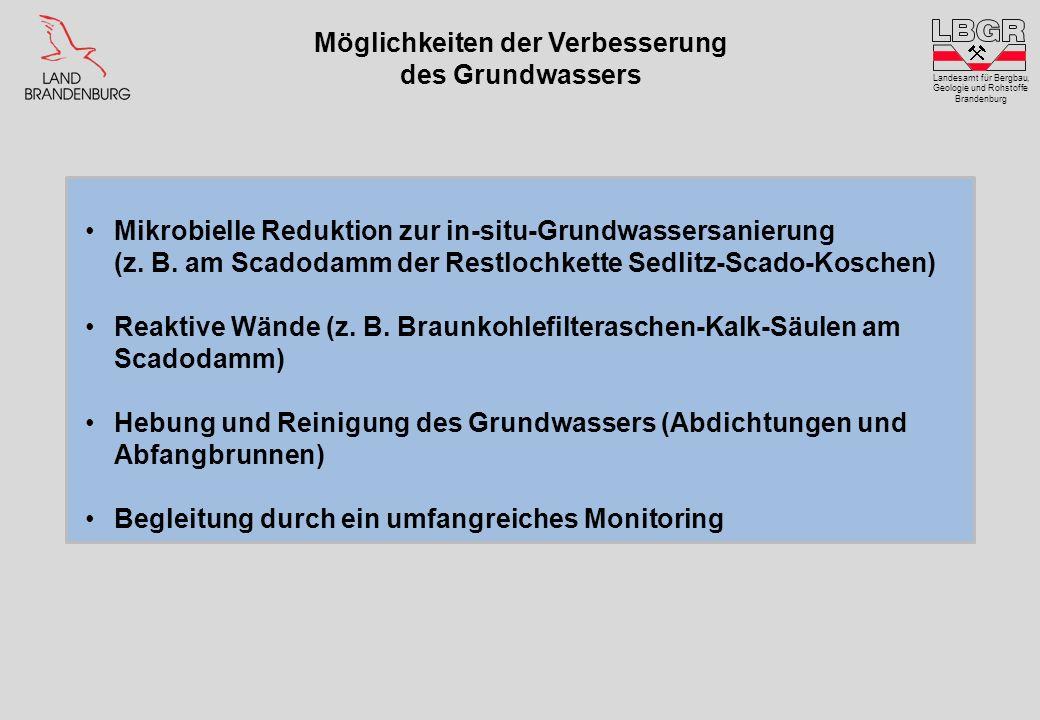 Möglichkeiten der Verbesserung des Grundwassers Landesamt für Bergbau, Geologie und Rohstoffe Brandenburg Mikrobielle Reduktion zur in-situ-Grundwasse