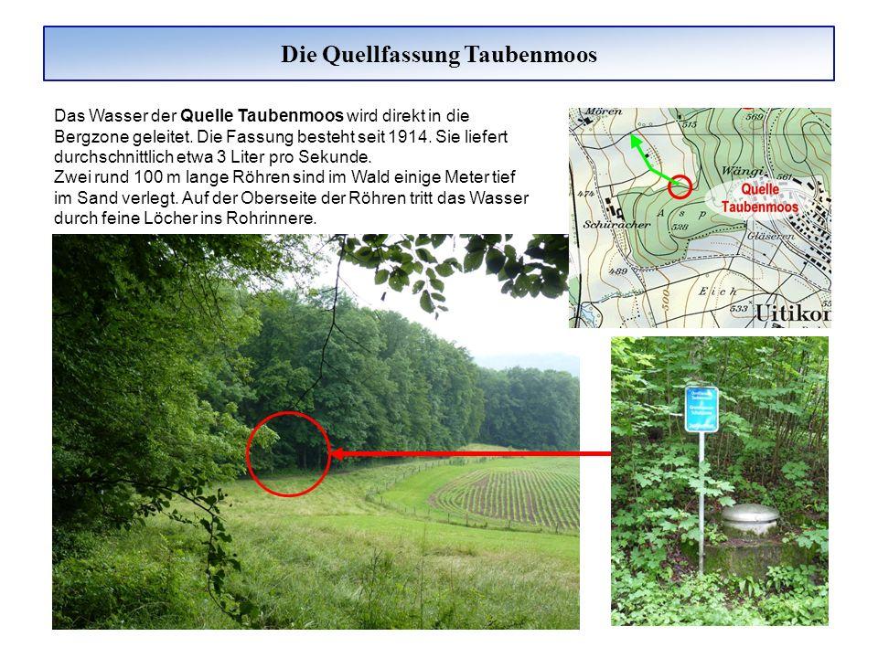 Die Quellfassung Taubenmoos Das Wasser der Quelle Taubenmoos wird direkt in die Bergzone geleitet. Die Fassung besteht seit 1914. Sie liefert durchsch