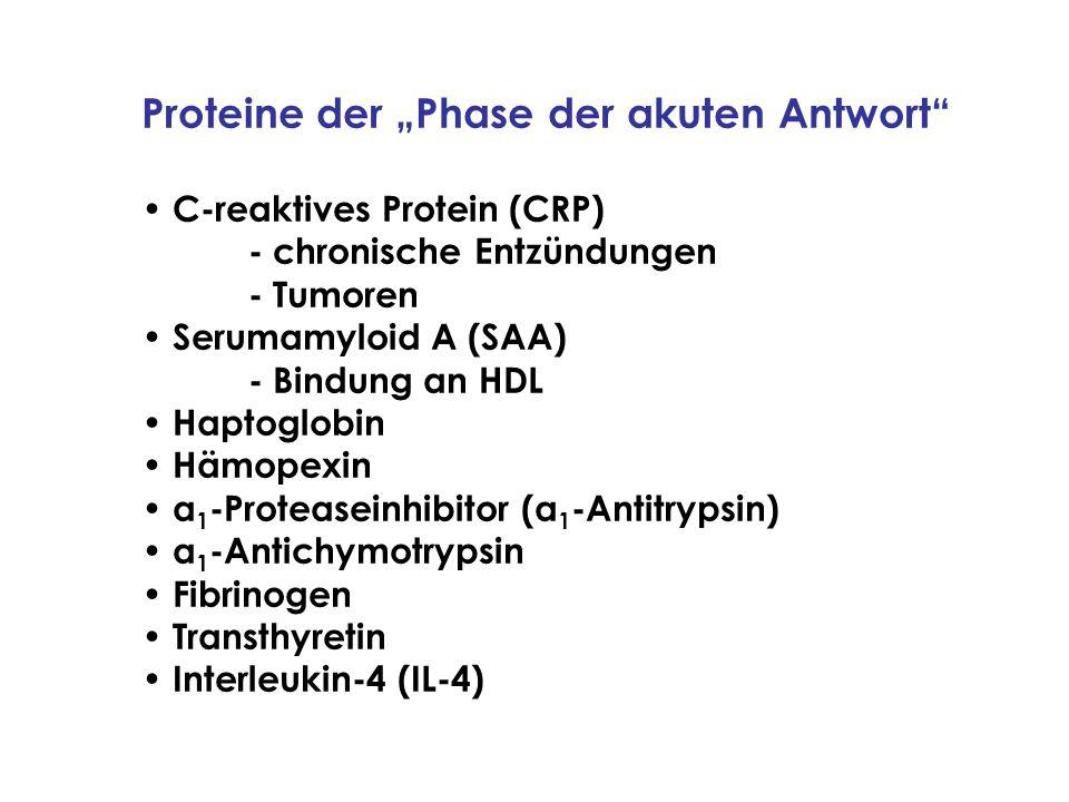 Proteine der Phase der akuten Antwort C-reaktives Protein (CRP) - chronische Entzündungen - Tumoren Serumamyloid A (SAA) - Bindung an HDL Haptoglobin