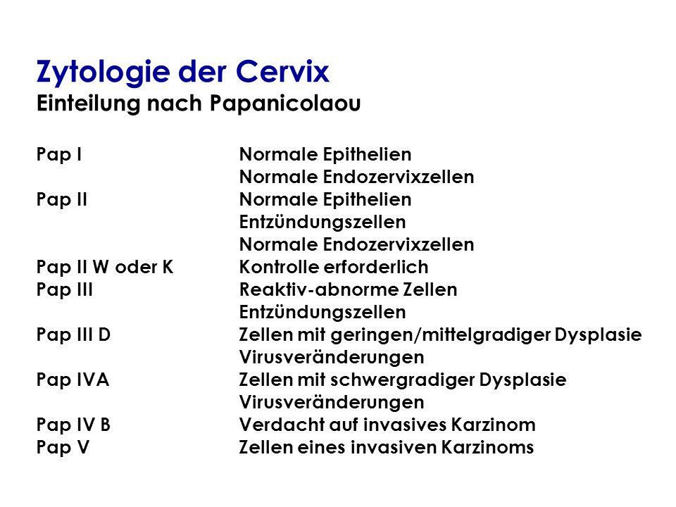Zytologie der Cervix Einteilung nach Papanicolaou Pap INormale Epithelien Normale Endozervixzellen Pap IINormale Epithelien Entzündungszellen Normale