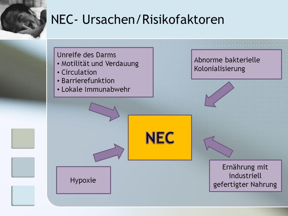 NEC- Ursachen/Risikofaktoren Hypoxie Unreife des Darms Motilität und Verdauung Circulation Barrierefunktion Lokale Immunabwehr Abnorme bakterielle Kol
