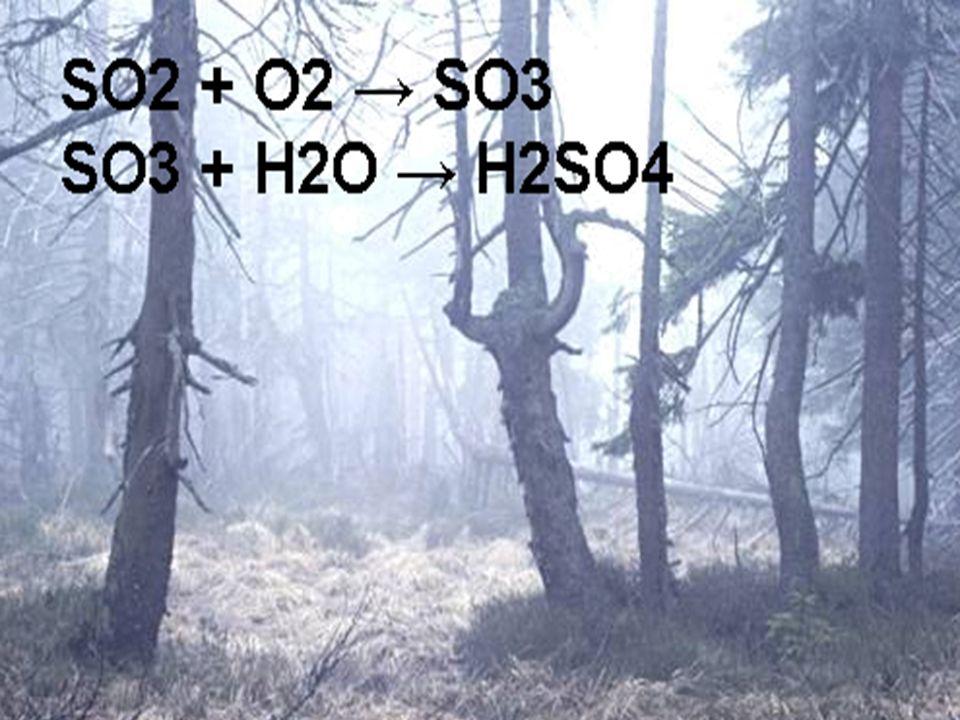 SO 2 S + O2 -----> SO 2 Eigenschaften: farbloses, stechend riechendes und sauer schmeckendes, giftiges Gas. Verursacht Husten, Atemnot oder Entzündung