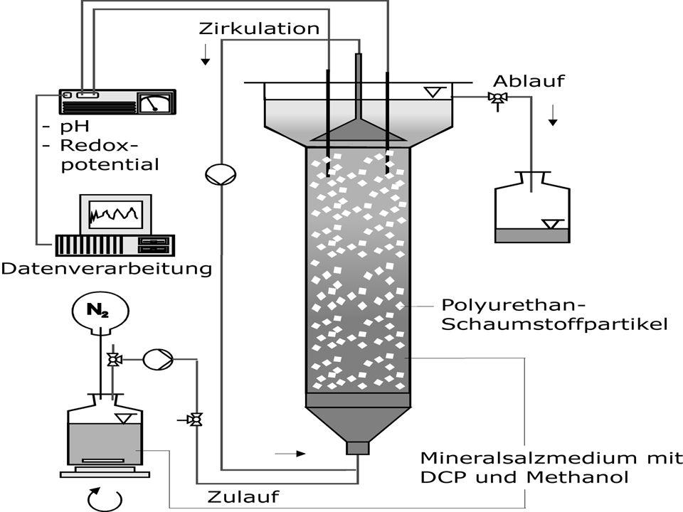 Kehrichtverbrennung: Ofen (bei Temp. unter 1000 Grad) Rauch geht durch Wärmetauscher (Energie wird gewonnen) Filter, Rauchwaschanlage (Reinigung) Kehr