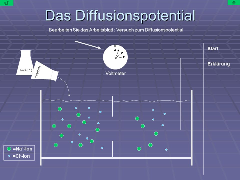Das Diffusionspotential Voltmeter NaCl-Lsg.