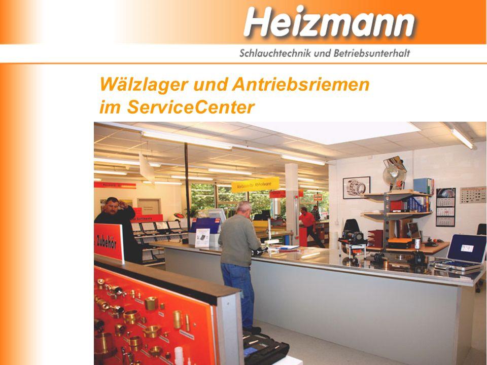 Wälzlager und Antriebsriemen im ServiceCenter
