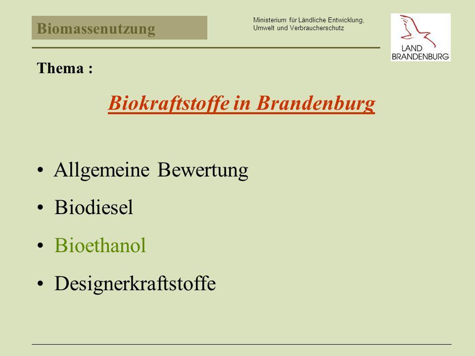 Biomassenutzung Ministerium für Ländliche Entwicklung, Umwelt und Verbraucherschutz Thema : Biokraftstoffe in Brandenburg Allgemeine Bewertung Biodiesel Bioethanol Designerkraftstoffe