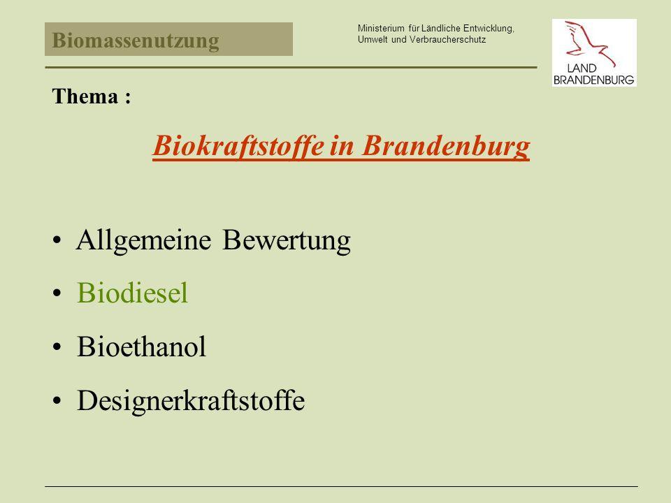 Bioethanol Ministerium für Ländliche Entwicklung, Umwelt und Verbraucherschutz Probleme Absatzrückgang bei Motorenbenzin prognostiziert.