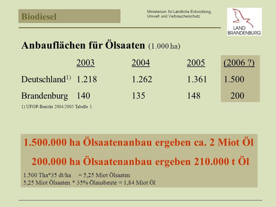 Biodiesel Ministerium für Ländliche Entwicklung, Umwelt und Verbraucherschutz Anbauflächen für Ölsaaten (1.000 ha) 200320042005 Deutschland 1) 1.2181.2621.361 Brandenburg 140135148 1) UFOP-Bericht 2004/2005 Tabelle 1 1.500.000 ha Ölsaatenanbau ergeben ca.