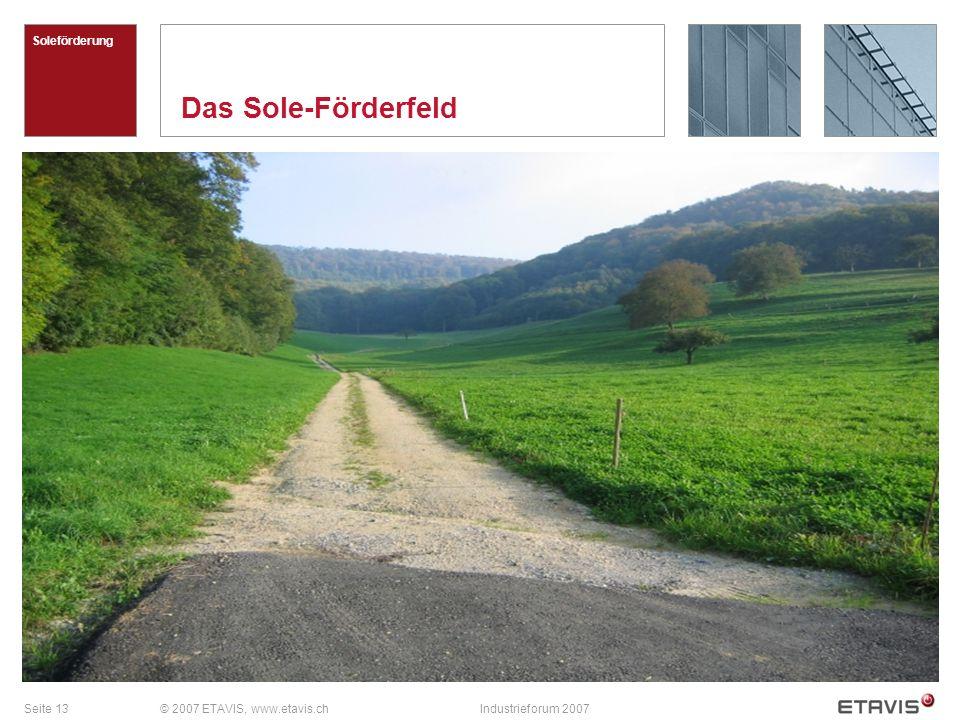 Seite 13© 2007 ETAVIS, www.etavis.chIndustrieforum 2007 Das Sole-Förderfeld Soleförderung