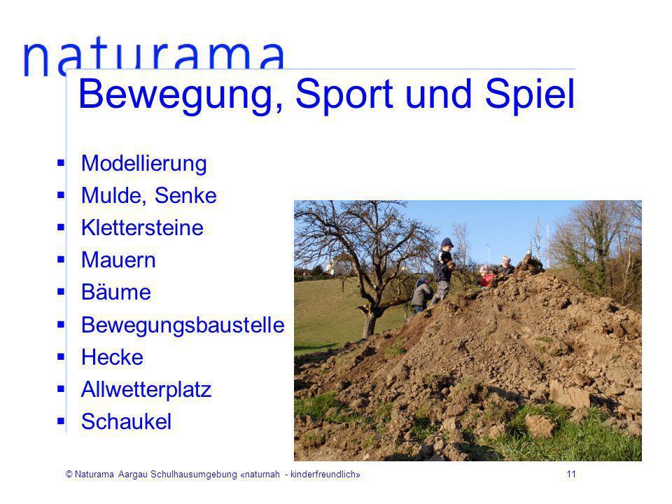 © Naturama Aargau Schulhausumgebung «naturnah - kinderfreundlich»11 Bewegung, Sport und Spiel Modellierung Mulde, Senke Klettersteine Mauern Bäume Bew