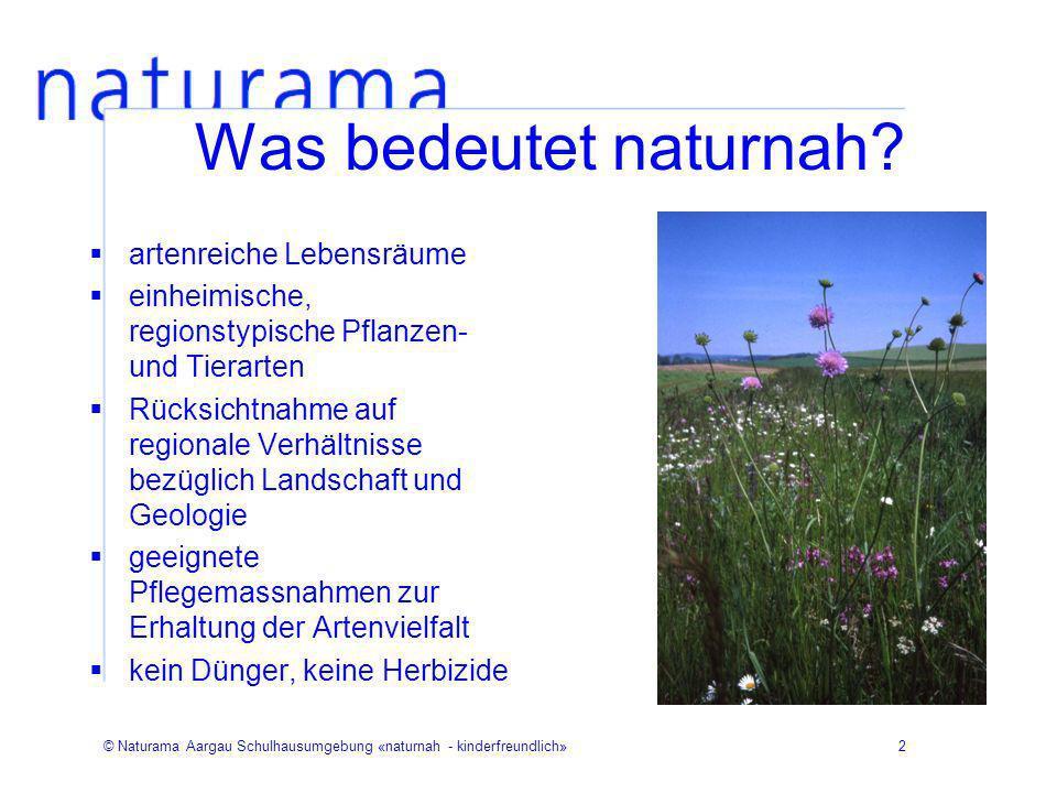 © Naturama Aargau Schulhausumgebung «naturnah - kinderfreundlich»2 Was bedeutet naturnah? artenreiche Lebensräume einheimische, regionstypische Pflanz