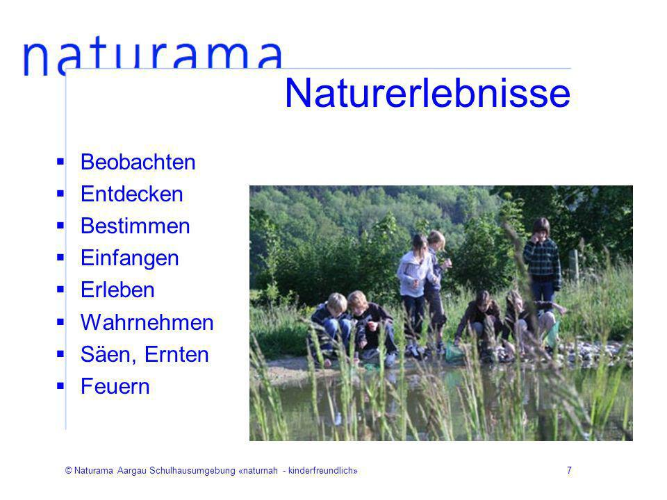 © Naturama Aargau Schulhausumgebung «naturnah - kinderfreundlich»8 Naturerlebnisse Wasser Teich Rinne Pfütze Brunnen Bach Pumpe