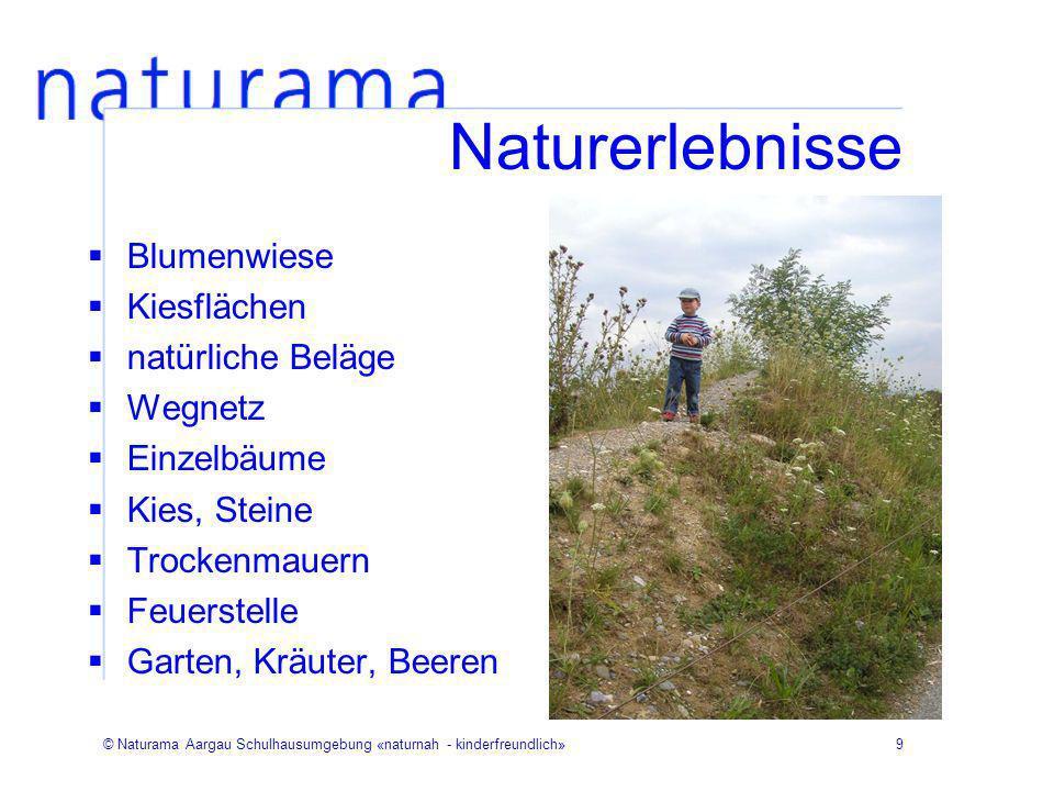 © Naturama Aargau Schulhausumgebung «naturnah - kinderfreundlich»9 Naturerlebnisse Blumenwiese Kiesflächen natürliche Beläge Wegnetz Einzelbäume Kies,