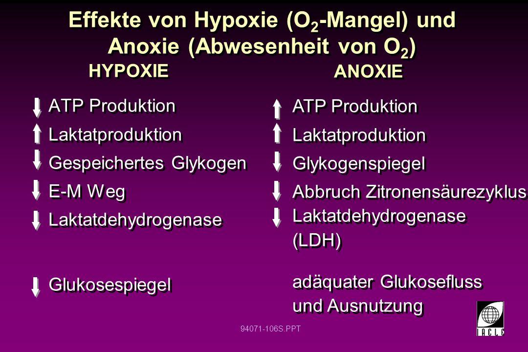 94071-106S.PPT Effekte von Hypoxie (O 2 -Mangel) und Anoxie (Abwesenheit von O 2 ) ATP Produktion Laktatproduktion Gespeichertes Glykogen E-M Weg Lakt