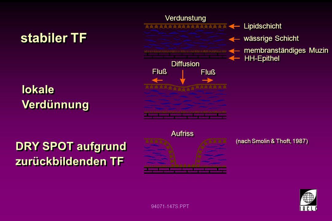 94071-147S.PPT stabiler TF lokale Verdünnung DRY SPOT aufgrund zurückbildenden TF Lipidschicht wässrige Schicht membranständiges Muzin HH-Epithel Fluß