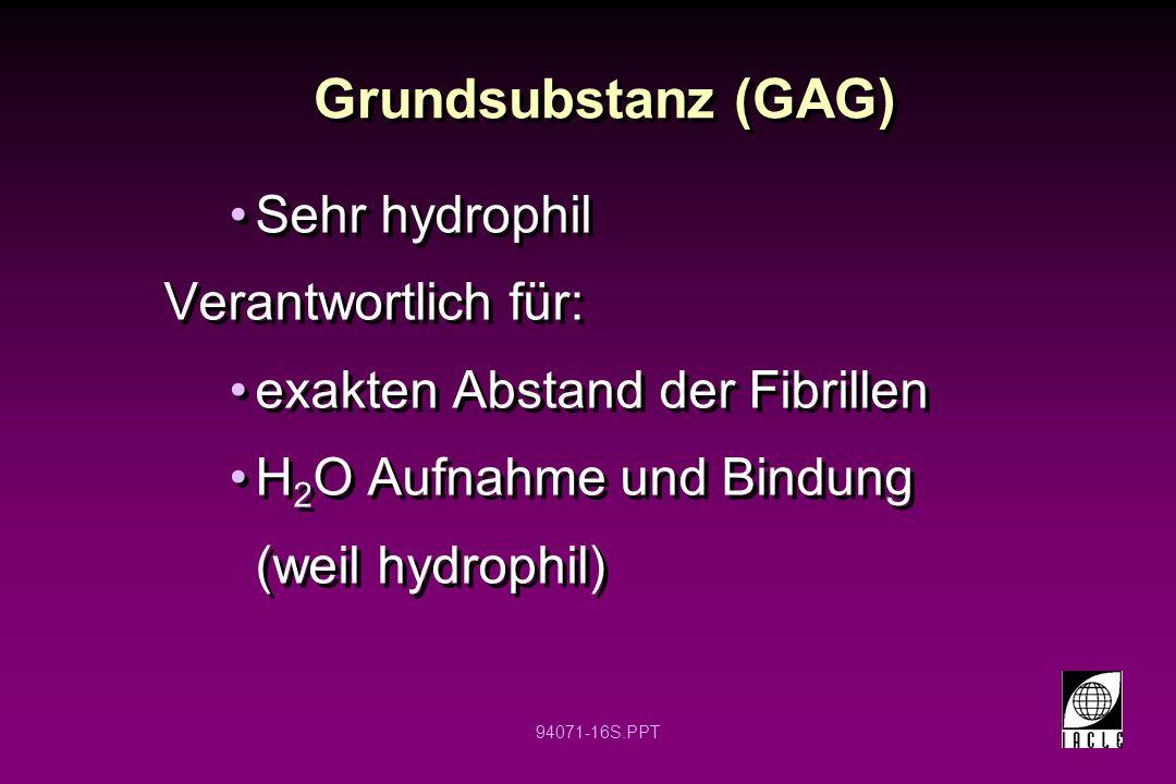 94071-16S.PPT Sehr hydrophil Verantwortlich für: exakten Abstand der Fibrillen H 2 O Aufnahme und Bindung (weil hydrophil) Sehr hydrophil Verantwortli