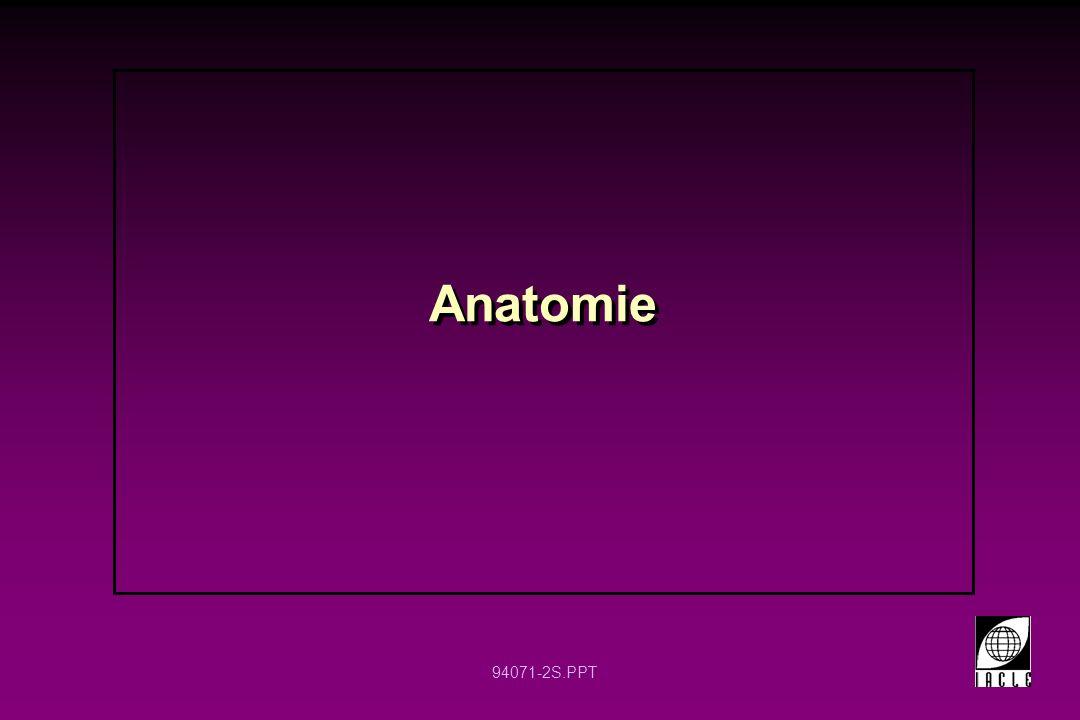 94071-2S.PPT Anatomie
