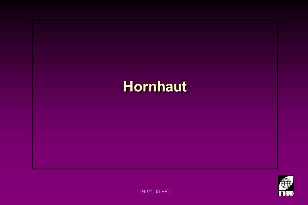 94071-3S.PPT Hornhaut
