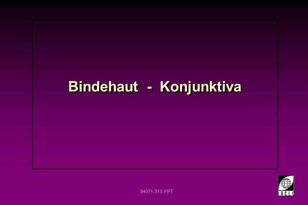 94071-31S.PPT Bindehaut - Konjunktiva