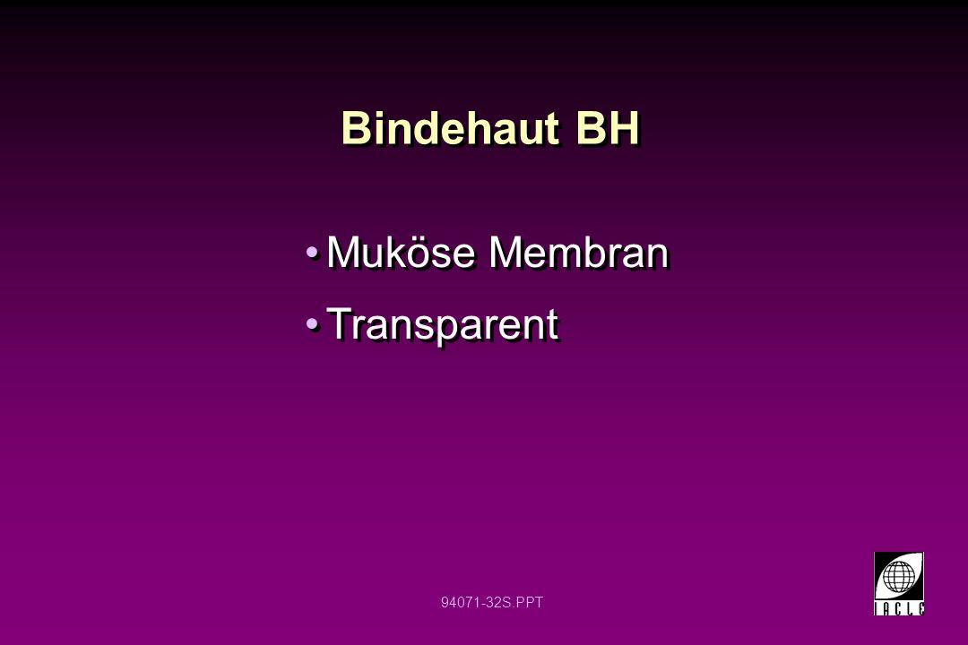 94071-32S.PPT Muköse Membran Transparent Muköse Membran Transparent Bindehaut BH