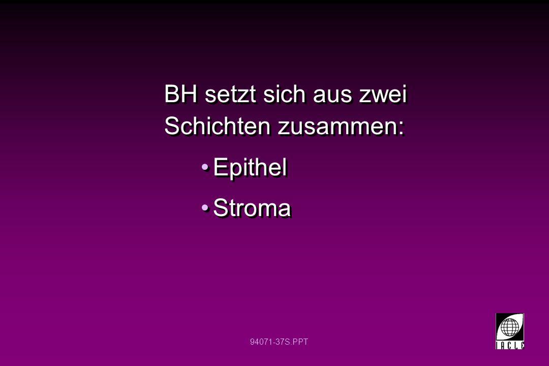 94071-37S.PPT BH setzt sich aus zwei Schichten zusammen: Epithel Stroma BH setzt sich aus zwei Schichten zusammen: Epithel Stroma
