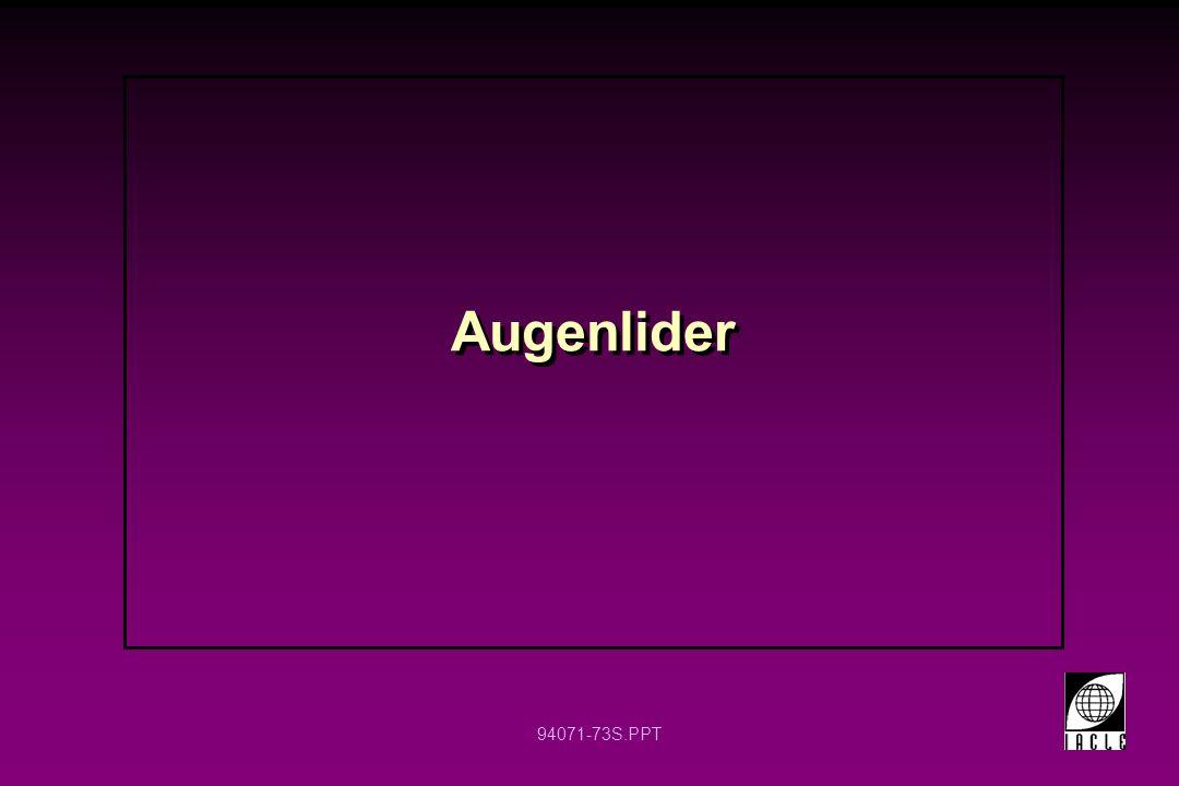 94071-73S.PPT Augenlider