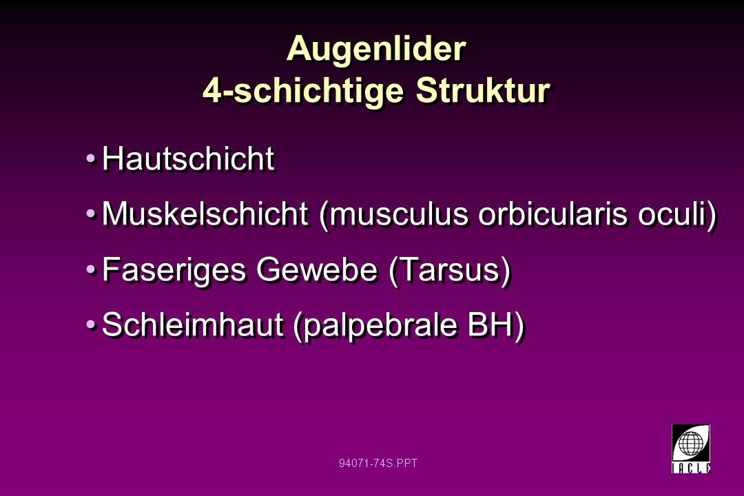 94071-74S.PPT Augenlider 4-schichtige Struktur Hautschicht Muskelschicht (musculus orbicularis oculi) Faseriges Gewebe (Tarsus) Schleimhaut (palpebral