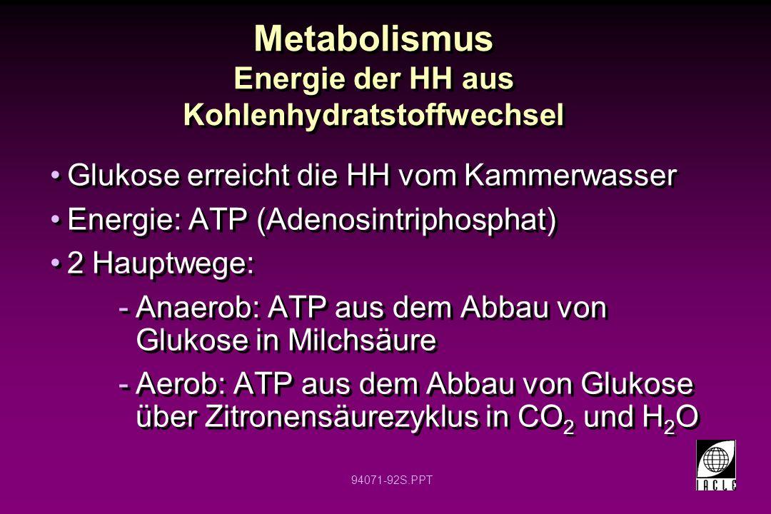 94071-92S.PPT Metabolismus Energie der HH aus Kohlenhydratstoffwechsel Glukose erreicht die HH vom Kammerwasser Energie: ATP (Adenosintriphosphat) 2 H