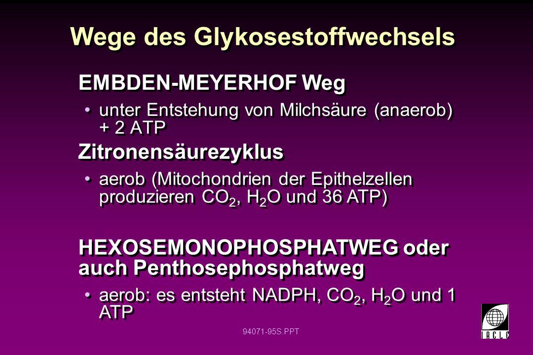 94071-95S.PPT EMBDEN-MEYERHOF Weg unter Entstehung von Milchsäure (anaerob) + 2 ATP EMBDEN-MEYERHOF Weg unter Entstehung von Milchsäure (anaerob) + 2