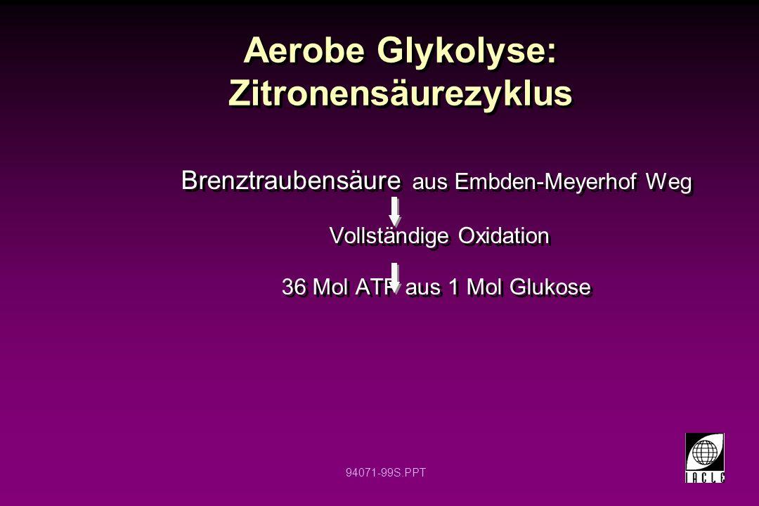 94071-99S.PPT Aerobe Glykolyse: Zitronensäurezyklus Brenztraubensäure aus Embden-Meyerhof Weg Vollständige Oxidation 36 Mol ATP aus 1 Mol Glukose Bren