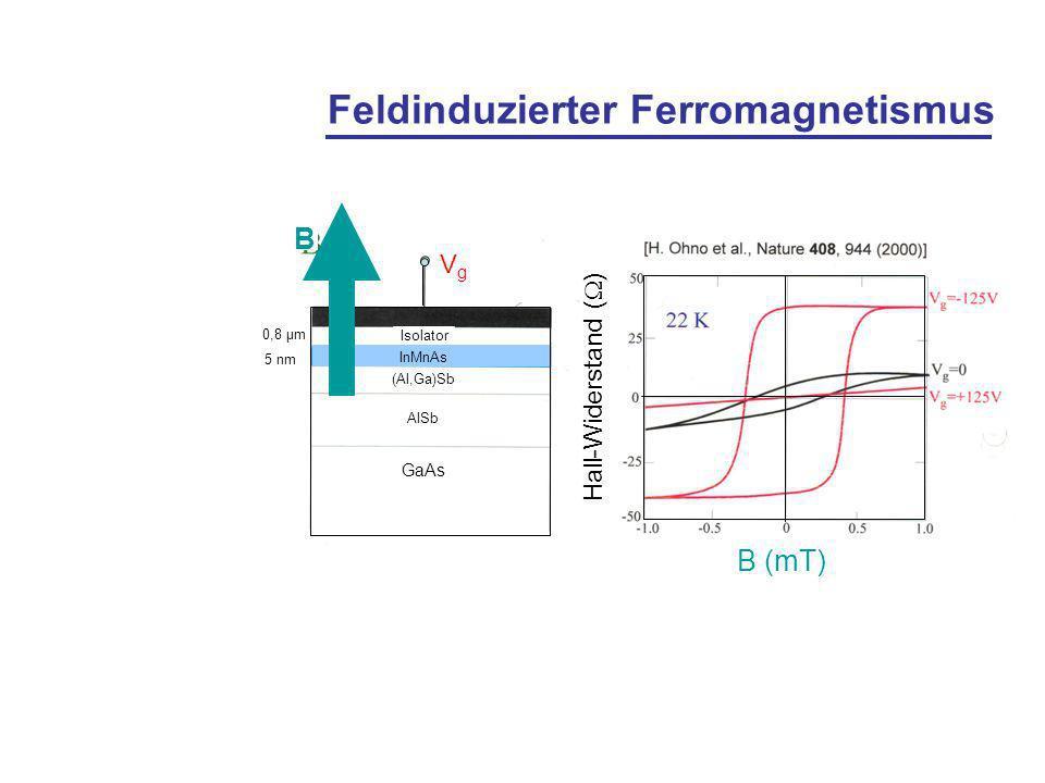 Feldinduzierter Ferromagnetismus B Isolator 0,8 µm InMnAs 5 nm (Al,Ga)Sb AlSb GaAs VgVg Hall-Widerstand ( ) B (mT)