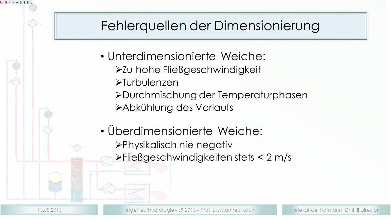 Alexander Hofmann, Dmitrij DirektorIngenieurhydrologie – SS 2013 – Prof. Dr. Manfred Koch13.08.2013 Fehlerquellen der Dimensionierung Unterdimensionie