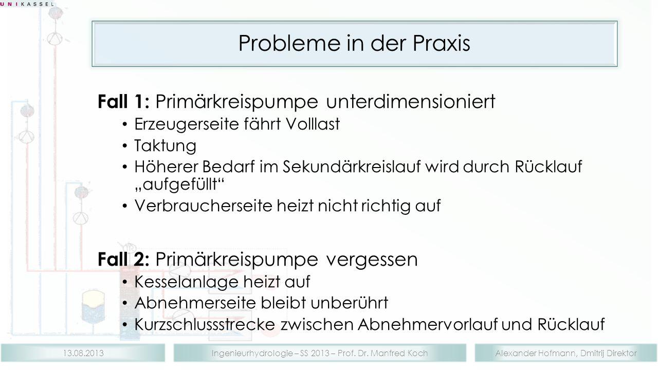 Alexander Hofmann, Dmitrij DirektorIngenieurhydrologie – SS 2013 – Prof. Dr. Manfred Koch13.08.2013 Probleme in der Praxis Fall 1: Primärkreispumpe un
