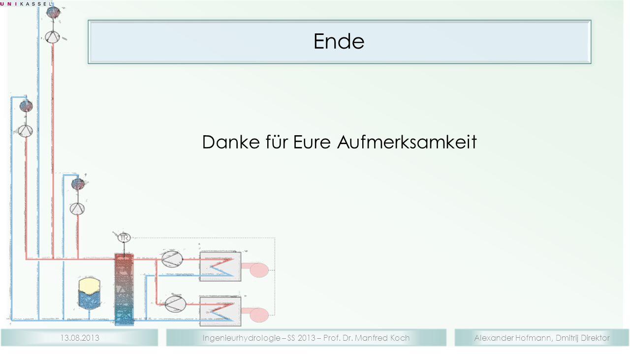 Alexander Hofmann, Dmitrij DirektorIngenieurhydrologie – SS 2013 – Prof. Dr. Manfred Koch13.08.2013 Ende Danke für Eure Aufmerksamkeit