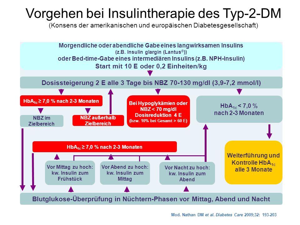 Vorgehen bei Insulintherapie des Typ-2-DM (Konsens der amerikanischen und europäischen Diabetesgesellschaft) Bei Hypoglykämien oder NBZ < 70 mg/dl Dos