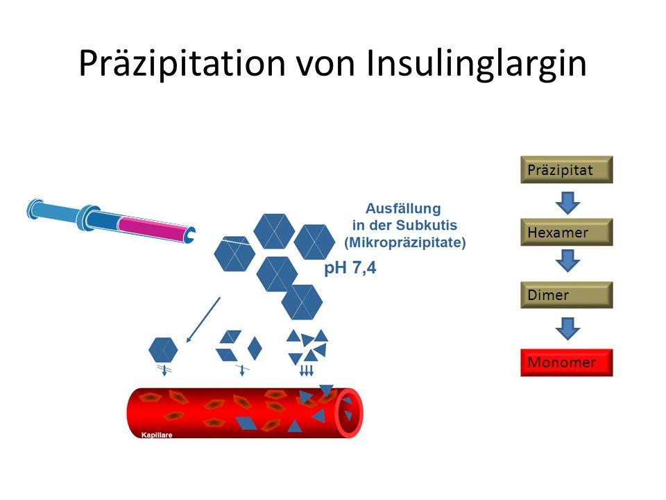 Präzipitation von Insulinglargin Hexamer Dimer Monomer Präzipitat