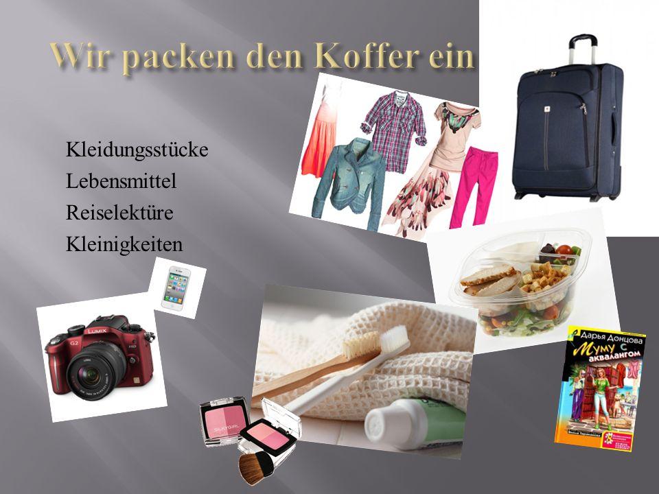 Kleidungsstücke Lebensmittel Reiselektüre Kleinigkeiten