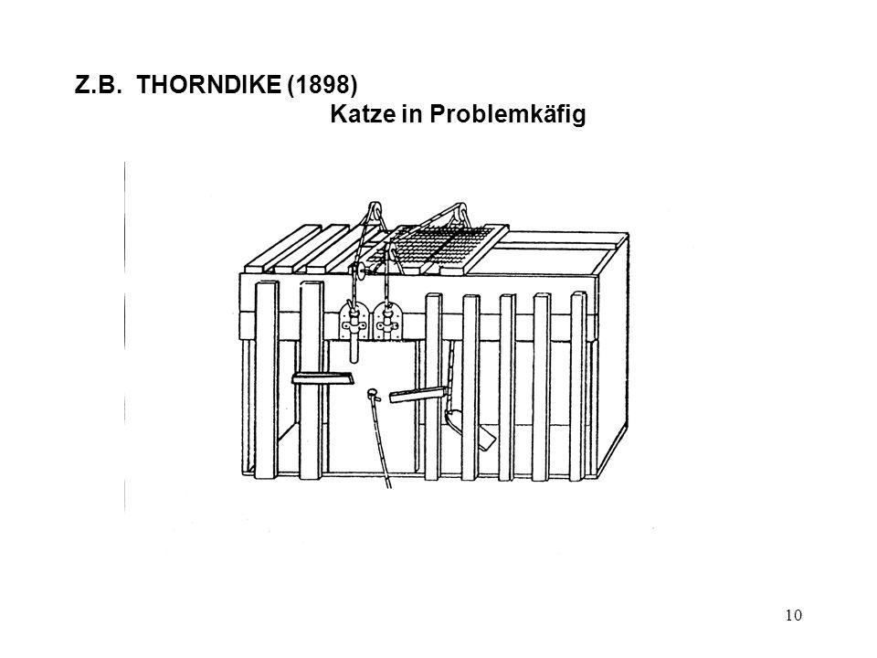 10 Z.B. THORNDIKE (1898) Katze in Problemkäfig