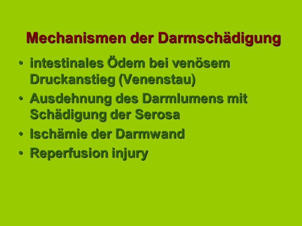 Ursachen einer Abdominalkrise primäre Tympanieprimäre Tympanie einfache Verstopfung (Obstruktion)einfache Verstopfung (Obstruktion) strangulierende Ob