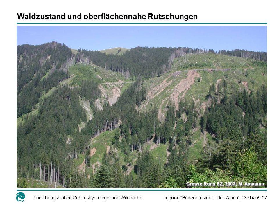 Forschungseinheit Gebirgshydrologie und WildbächeTagung Bodenerosion in den Alpen, 13./14.09.07 Waldzustand und oberflächennahe Rutschungen Grosse Runs SZ, 2007; M.