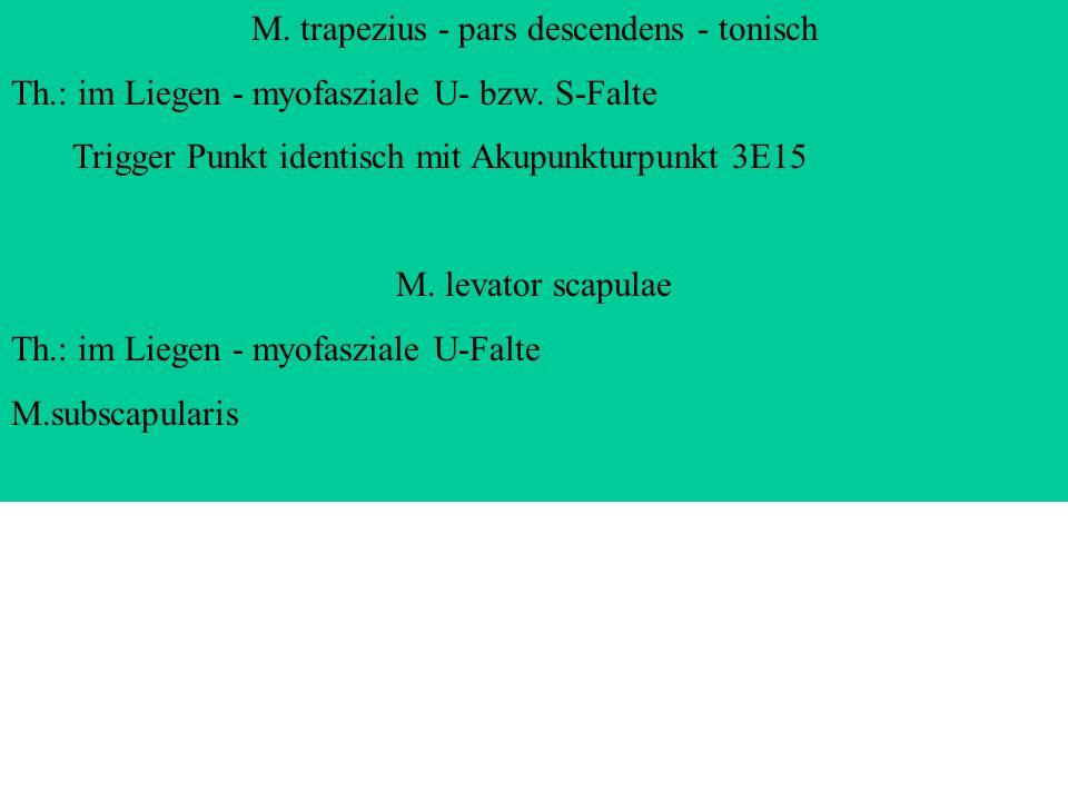 M. trapezius - pars descendens - tonisch Th.: im Liegen - myofasziale U- bzw. S-Falte Trigger Punkt identisch mit Akupunkturpunkt 3E15 M. levator scap