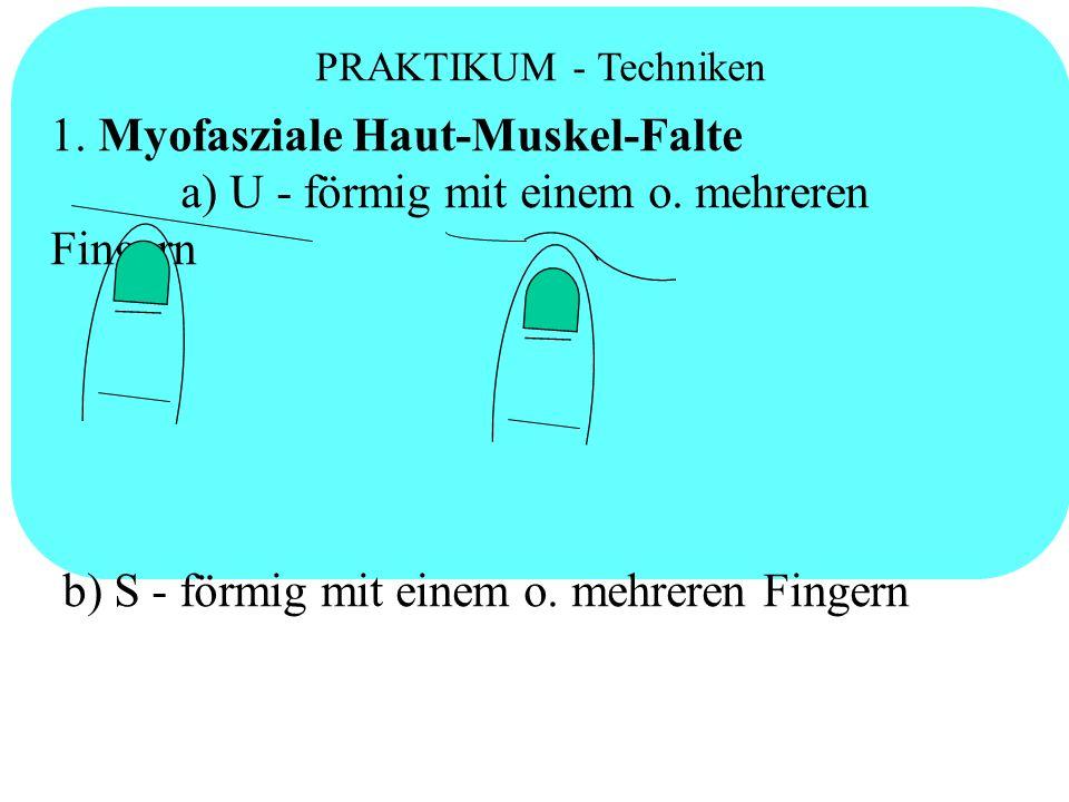 PRAKTIKUM - Techniken 1. Myofasziale Haut-Muskel-Falte a) U - förmig mit einem o. mehreren Fingern b) S - förmig mit einem o. mehreren Fingern