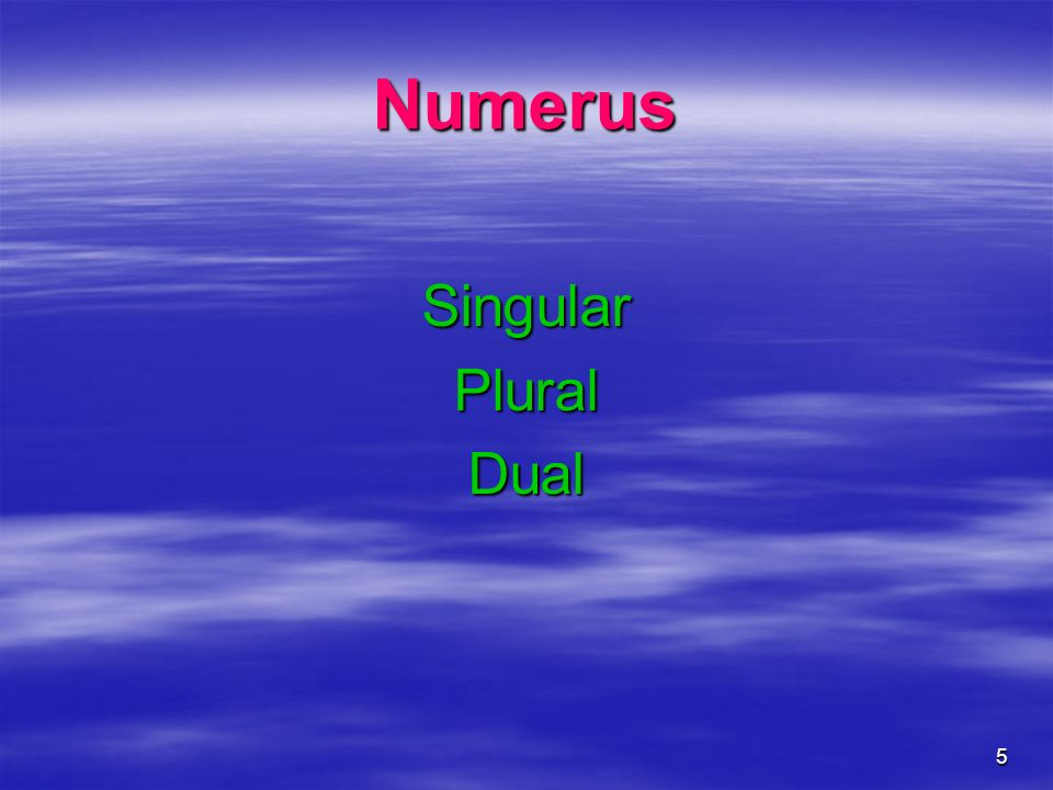 5 Numerus SingularPluralDual