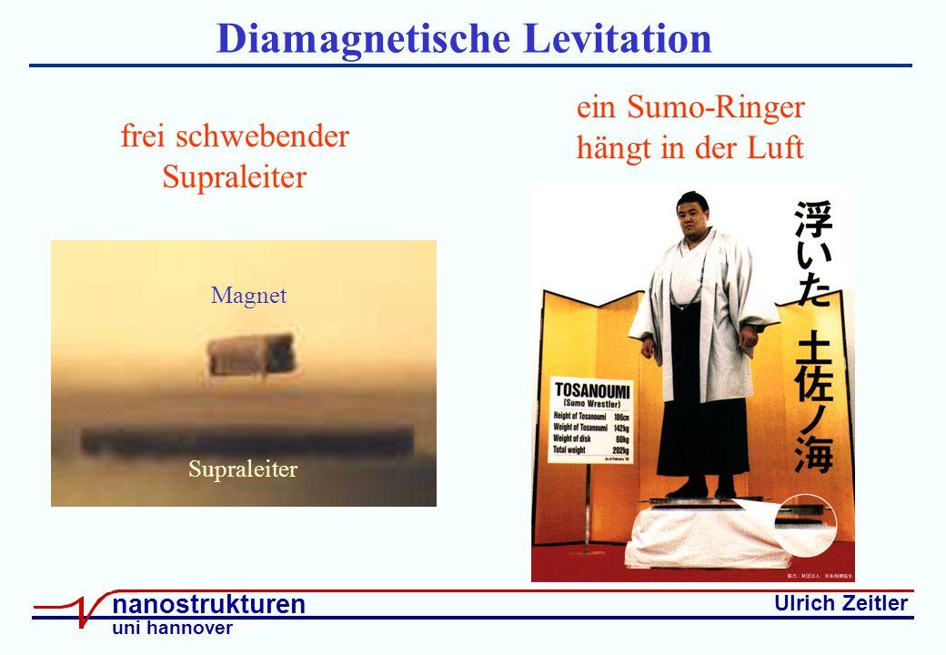 Ulrich Zeitler nanostrukturen uni hannover Diamagnetische Levitation Supraleiter Magnet frei schwebender Supraleiter ein Sumo-Ringer hängt in der Luft