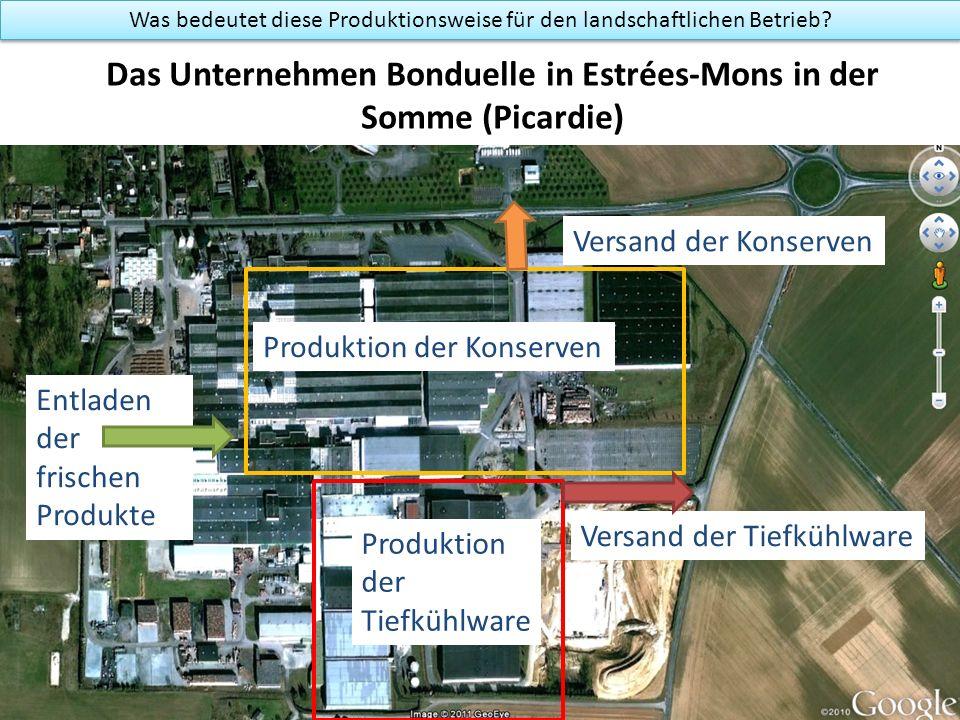 Das Unternehmen Bonduelle in Estrées-Mons in der Somme (Picardie) Produktion der Konserven Was bedeutet diese Produktionsweise für den landschaftlichen Betrieb.