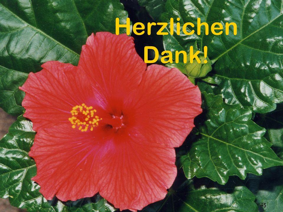 3. November 2010 Dr. Maas 45 3.November 2010Dr. Maas45 Herzlichen Dank!