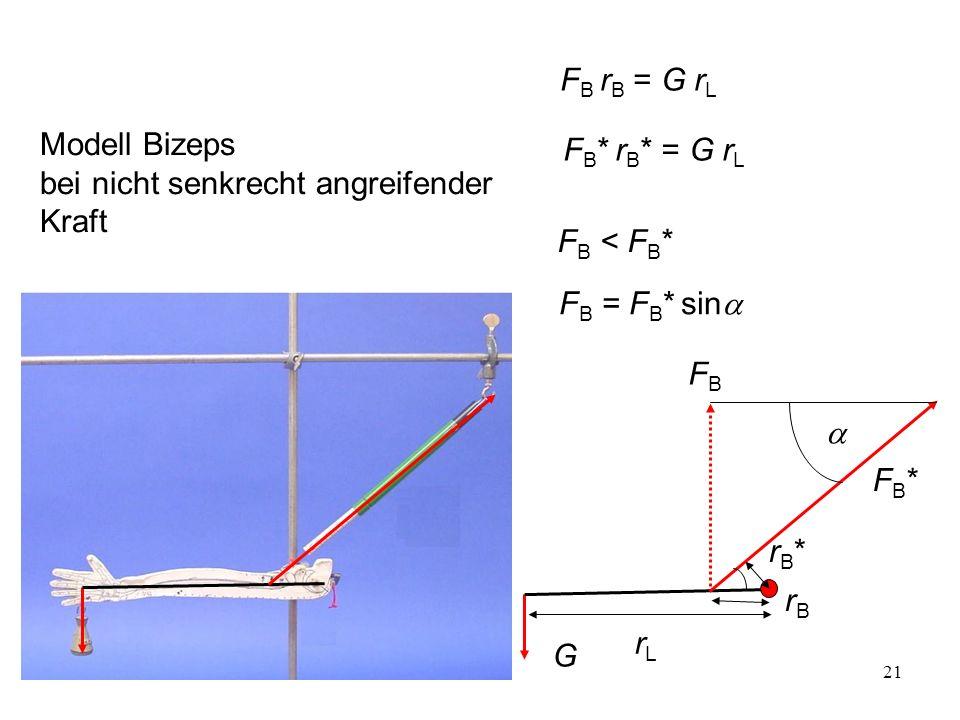 21 FB*FB* G rB*rB* rLrL F B * r B * = G r L Modell Bizeps bei nicht senkrecht angreifender Kraft rBrB FBFB F B r B = G r L F B = F B * sin F B < F B *