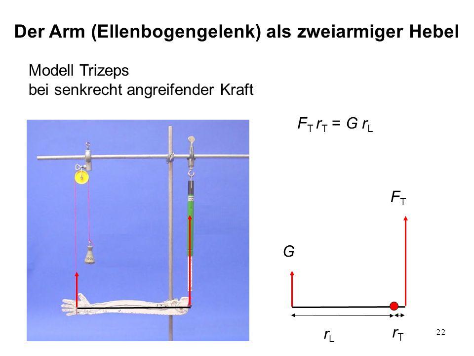 22 Modell Trizeps bei senkrecht angreifender Kraft FTFT G rTrT rLrL F T r T = G r L Der Arm (Ellenbogengelenk) als zweiarmiger Hebel