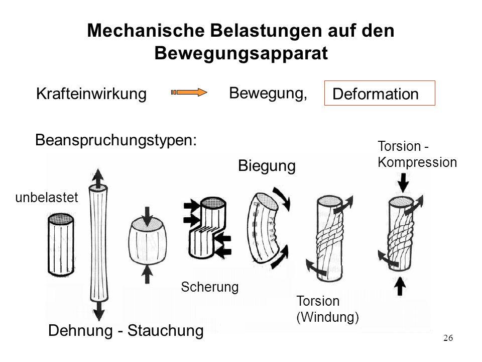 26 Mechanische Belastungen auf den Bewegungsapparat Krafteinwirkung Bewegung, Deformation Beanspruchungstypen: Dehnung - Stauchung Biegung Scherung un